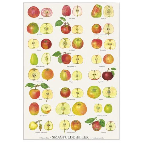 Koustrup & Co. plakat i A2 - smagfulde æbler