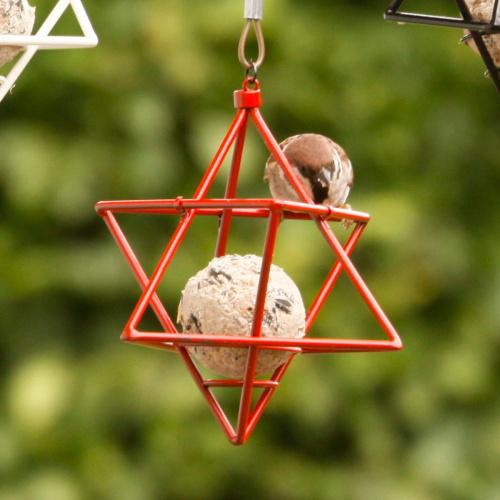 Wildlife Garden stjerne til mejsebold - rød