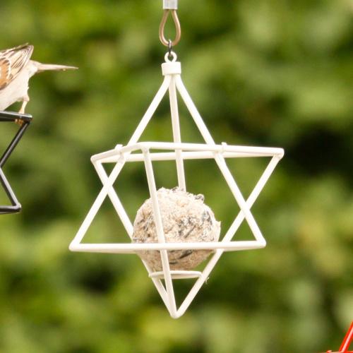 Wildlife Garden stjerne til mejsebold - hvid