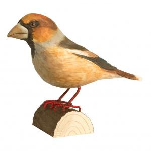 Wildlife Garden træfugl - kernebider