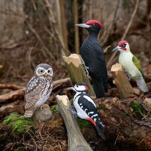 Wildlife Garden træfugl - grønspætte