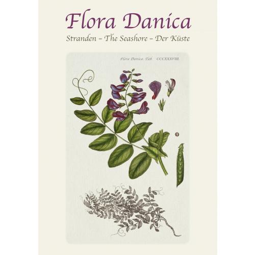 Flora Danica kortmappe - stranden