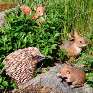 Wildlife Garden trædyr - kanin