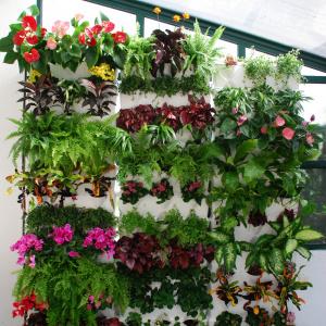 Minigarden Vertical plantevæg - hvid