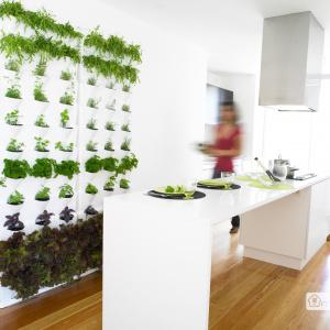 Minigarden Vertical køkkenhave - hvid