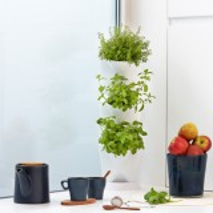 Minigarden Corner plantevæg - hvid