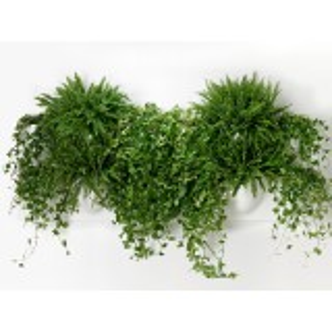 VertiPlants vægkrukke - hvid