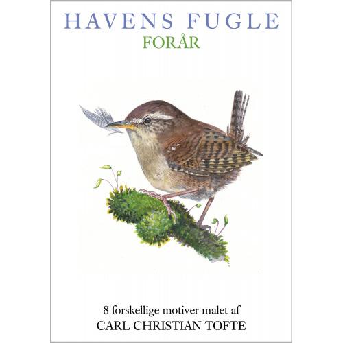 Koustrup & Co. kortmappe - fugle, forår