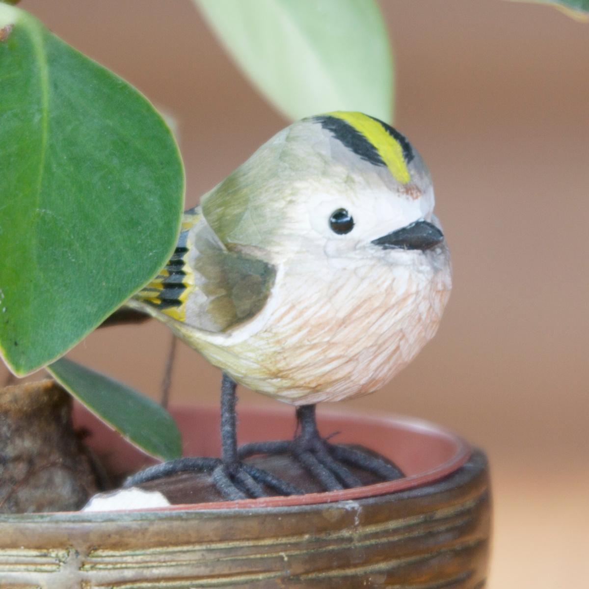 Wildlife Garden træfugl - fuglekonge