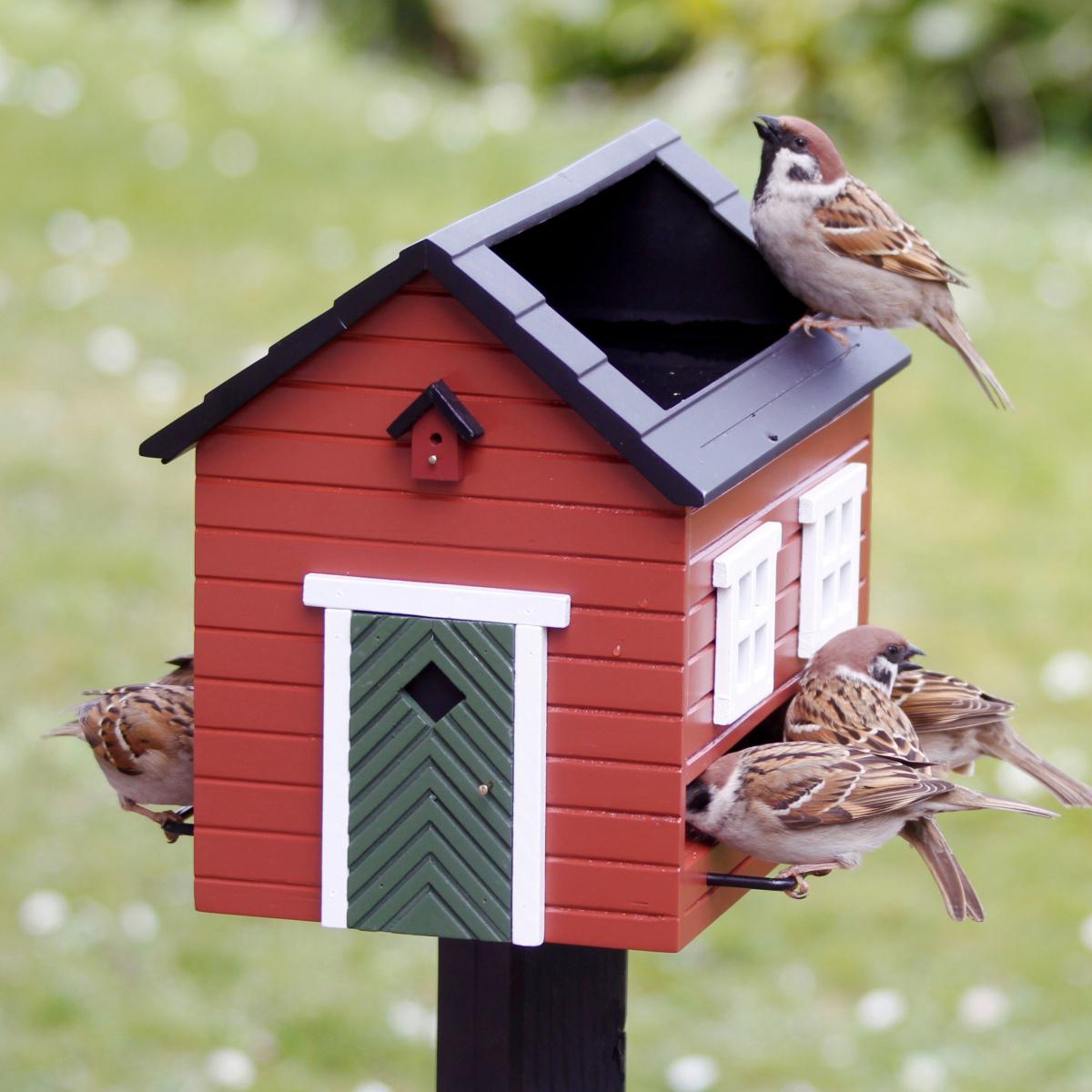 Wildlife Garden foderhus med fuglebad - rød