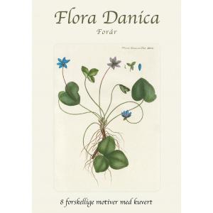 Flora Danica kortmappe - forår