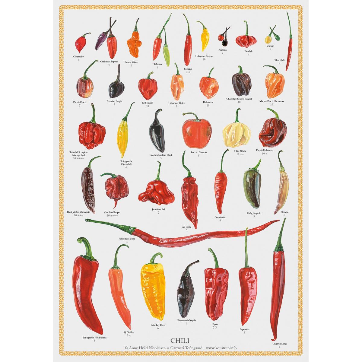 Koustrup & Co. plakat i A2 - chili