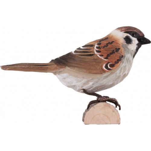 Wildlife Garden træfugl - skovspurv