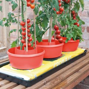 Garland planteringe, 3 stk. - rød