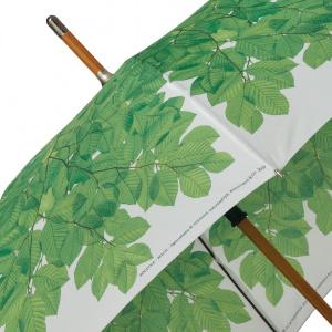 Koustrup & Co. paraply med bøgekrone