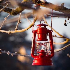 Feuerhand petroleumslampe - rubinrød