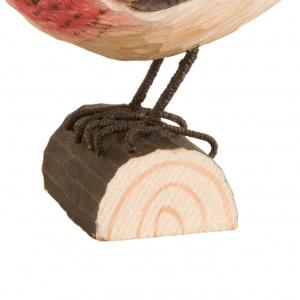 Wildlife Garden træfugl - tornirisk
