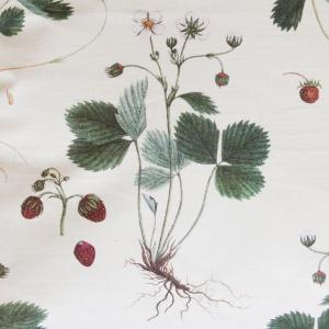Flora Danica pude - jordbær