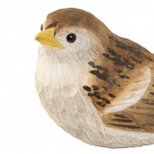 Wildlife Garden træfugl - gråspurv