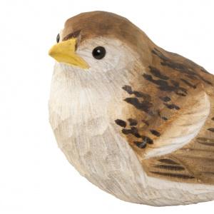 Wildlife Garden træfugl - gråspurv unge