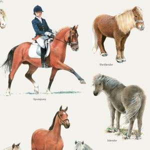 Koustrup & Co. plakat i A2 - heste og ponyer