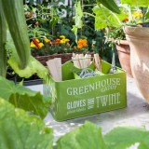 Burgon & Ball drivhus opbevaringskasse - grøn