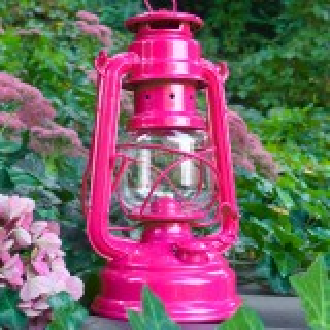 Feuerhand petroleumslampe - magenta