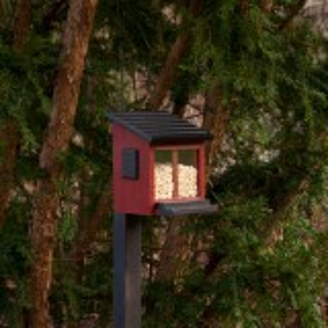 Wildlife Garden egern foderhus - rød