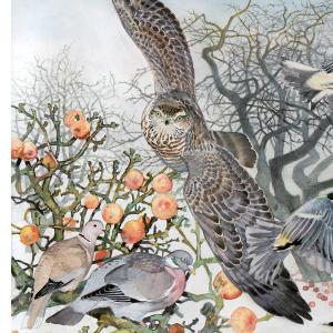 Koustrup & Co. kunsttryk i B2 - Fugleliv