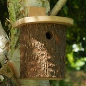 Wildlife World fuglehus af træstamme