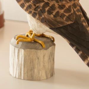 Wildlife Garden træfugl - dværgfalk