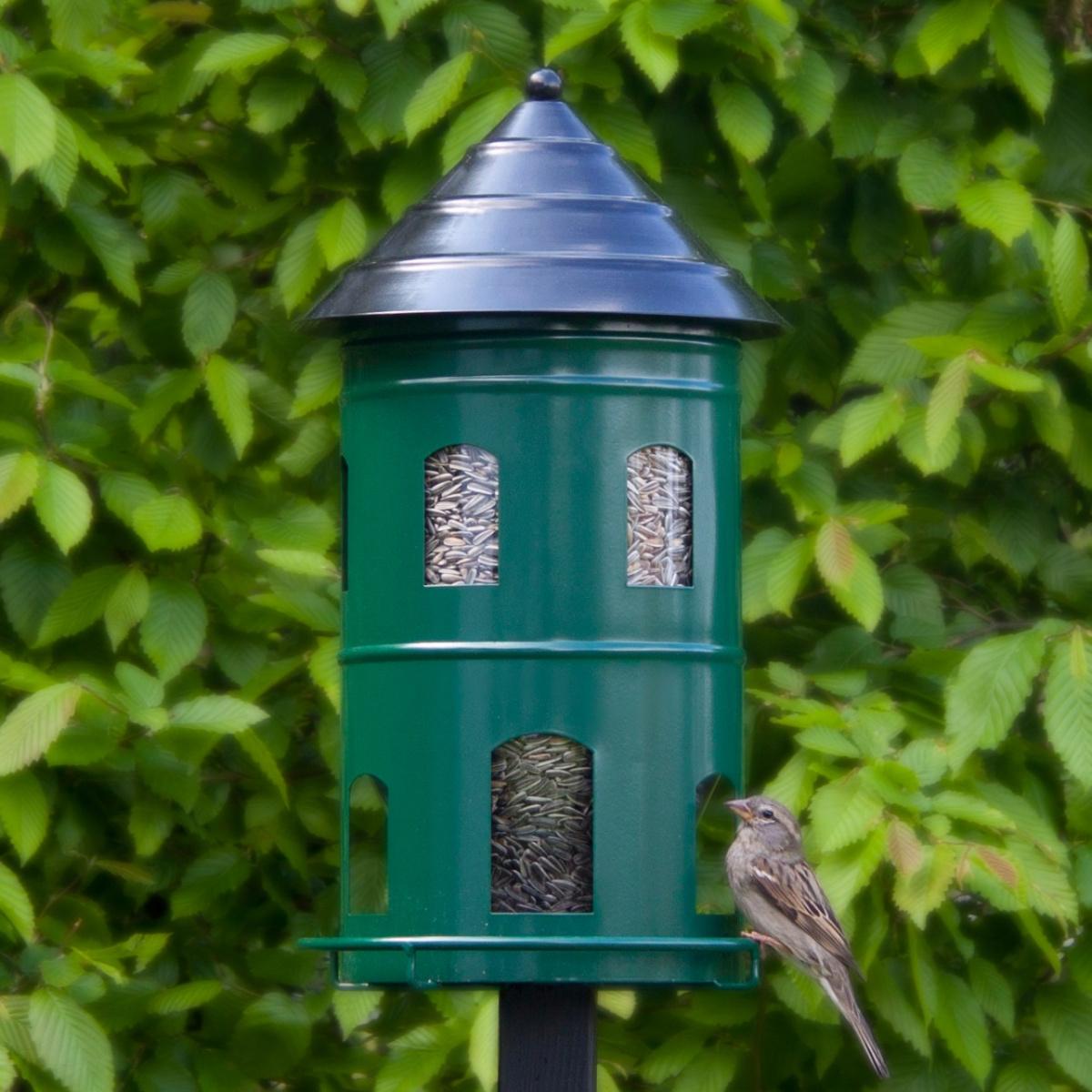Wildlife Garden gigant foderautomat - grøn