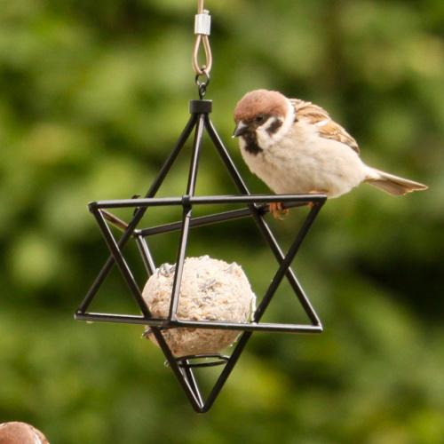 Wildlife Garden stjerne til mejsebold - sort