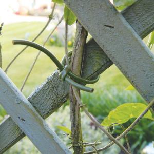 Garland fleksibel opbindingssnor, 80 m - grøn