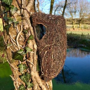 Wildlife World camouflage fuglehus i flet