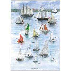 Koustrup & Co. plakat i A2 - sejlbåde