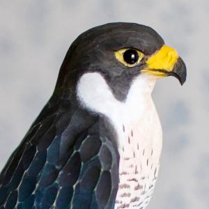 Wildlife Garden træfugl - vandrefalk