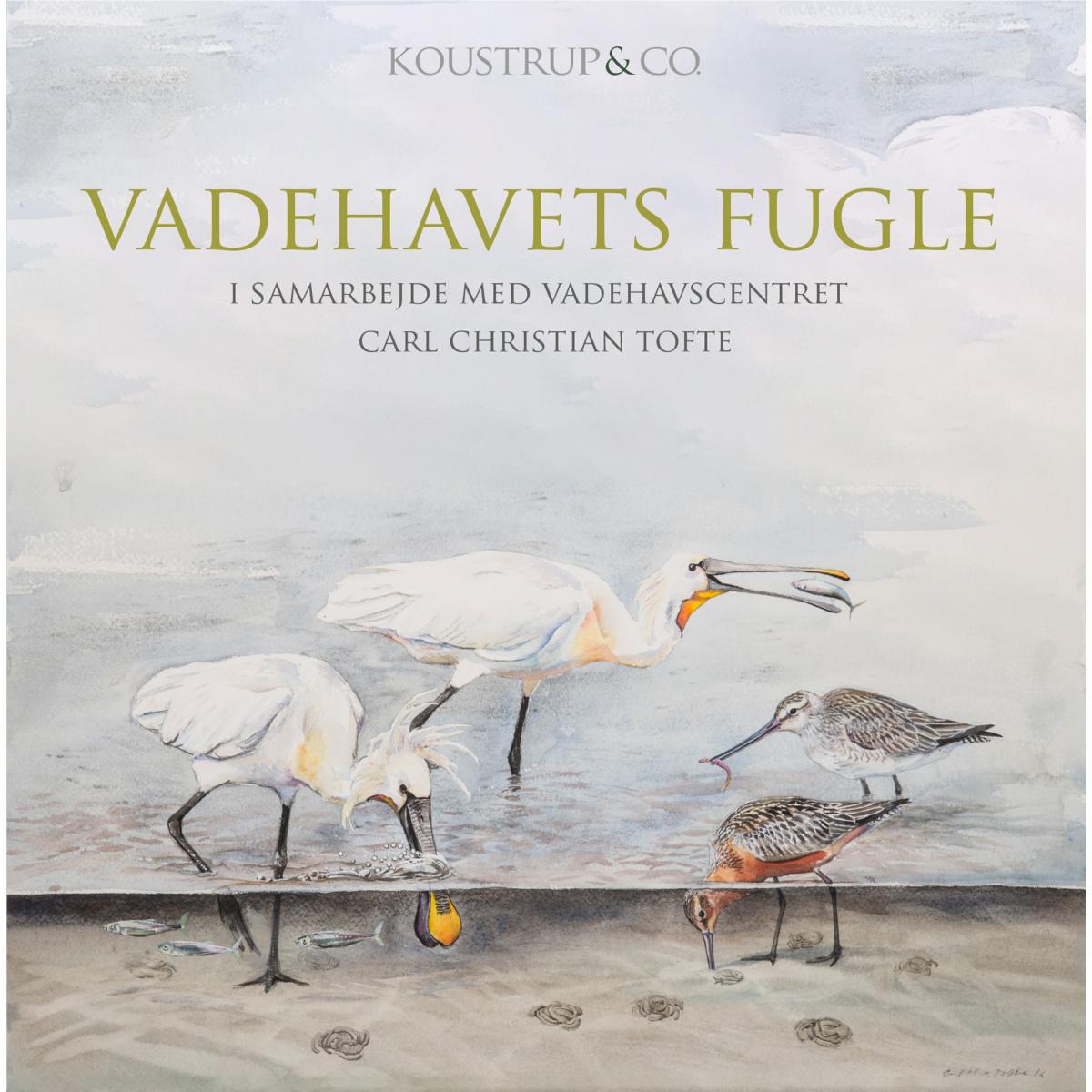 Koustrup & Co. kortmappe - vadehavets fugle