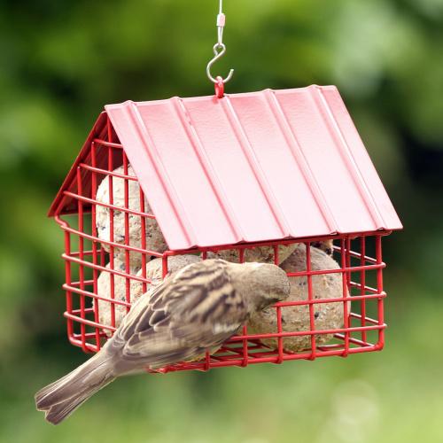 Wildlife Garden hus til mejsebolde - rød
