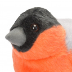 Wild Republic fugl med lyd - dompap
