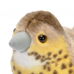 Wild Republic fugl med lyd - sangdrossel