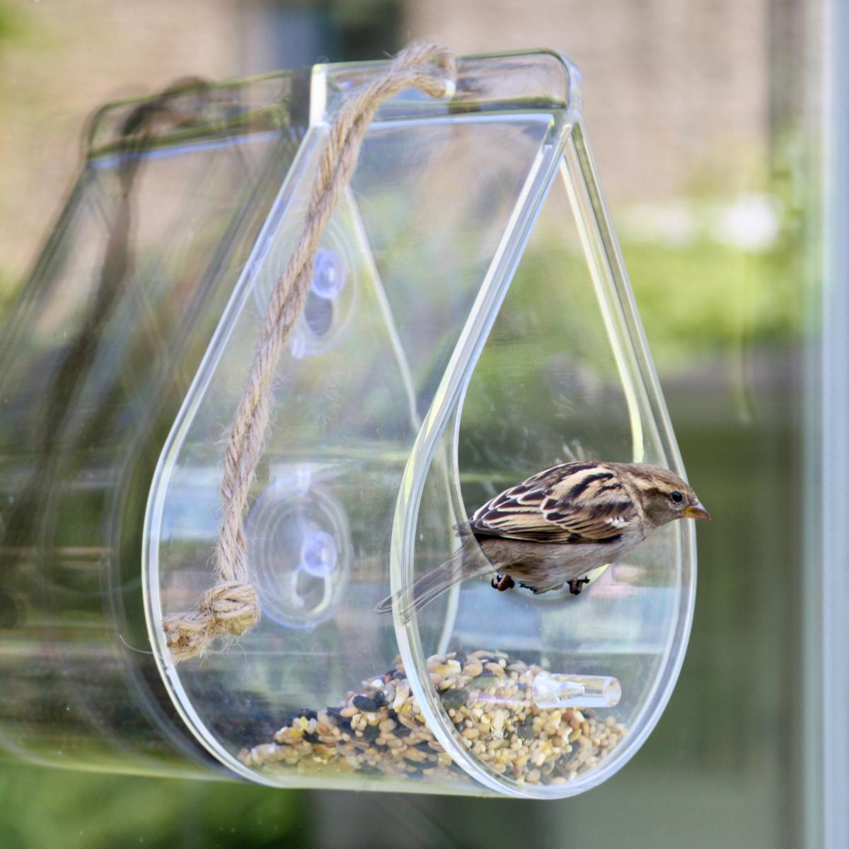 Wildlife World foderbræt til vindue og ophæng
