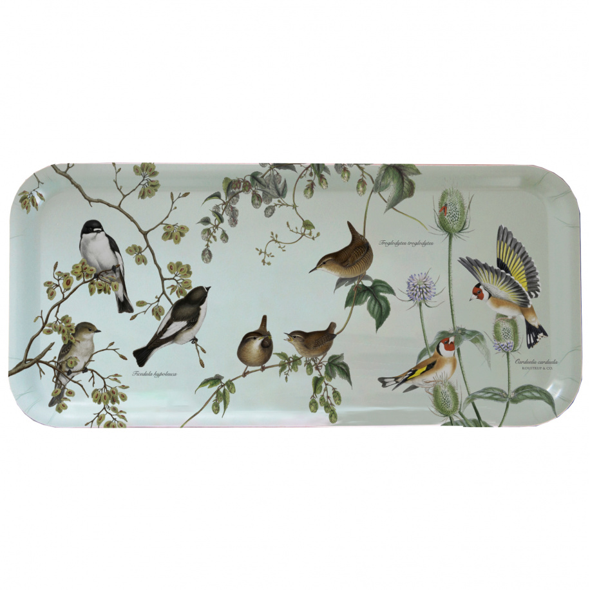 Koustrup & Co. bakke - havens fugle
