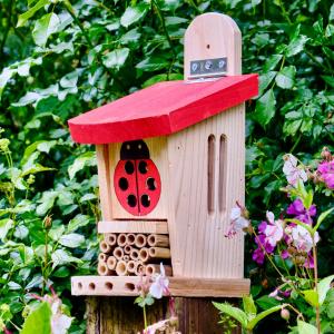 Wildlife World insekthotel med mariehøne
