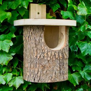 Wildlife World fuglehus af træstamme - rødhals