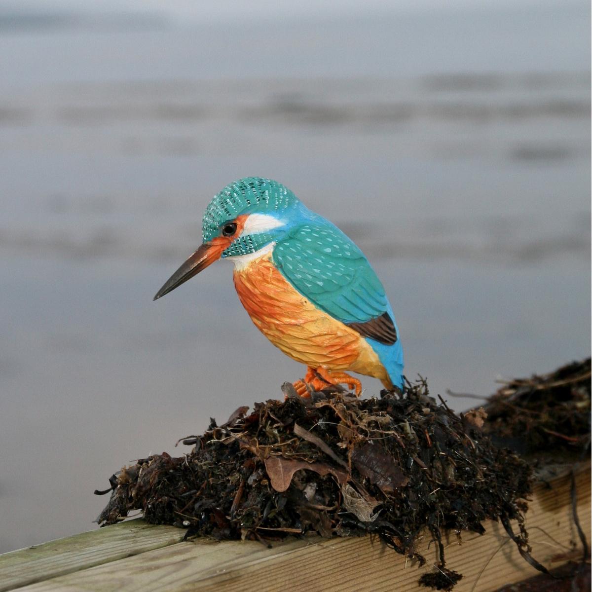 Wildlife Garden træfugl - isfugl