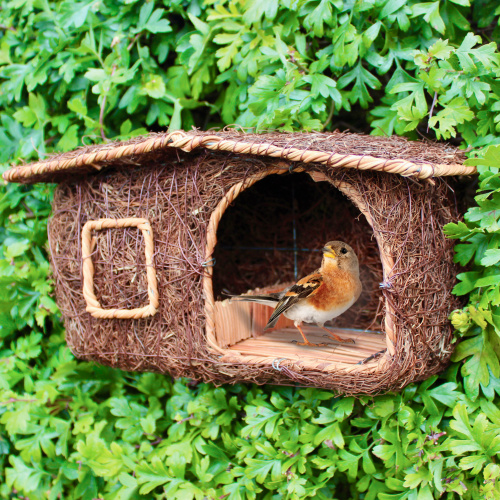 Wildlife World fuglehus hytte i flet